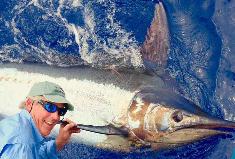 Sport Fishing in Madeira